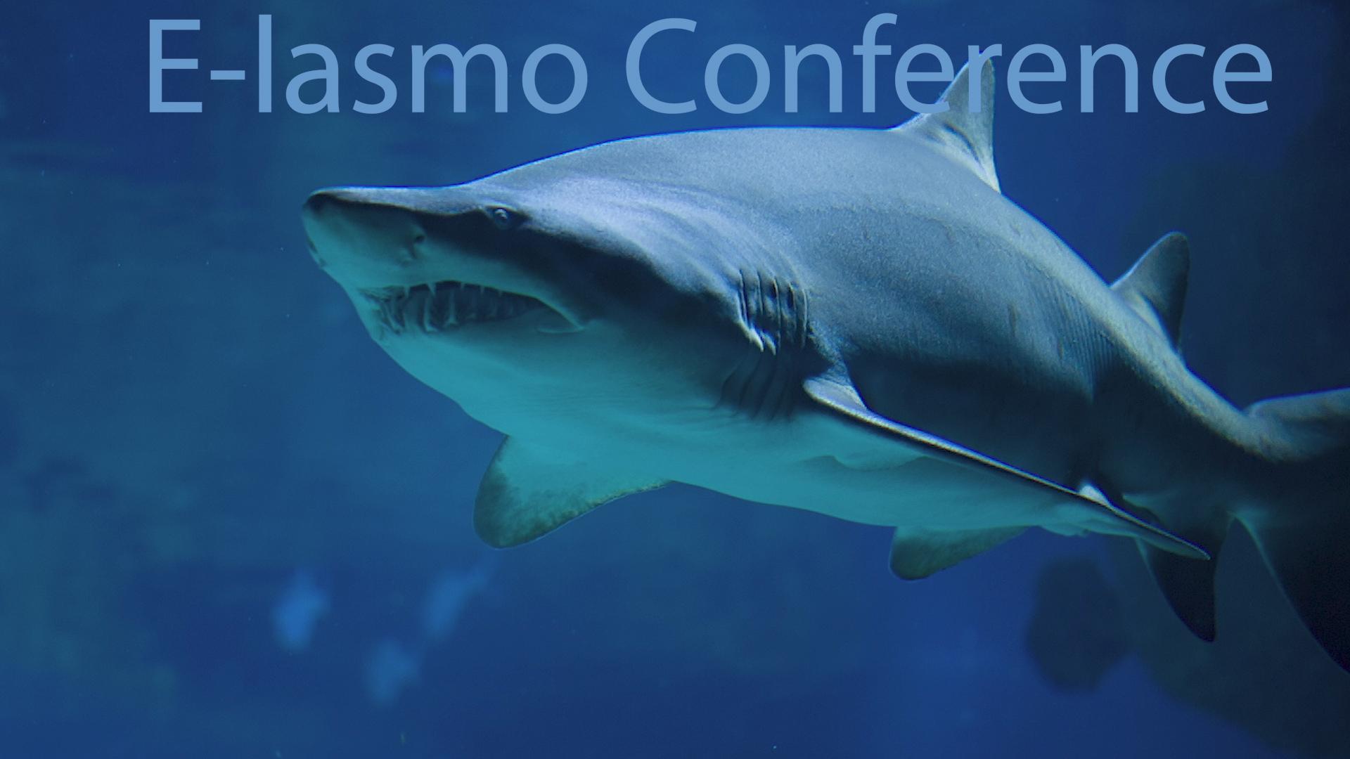 E-lasmo Conference  April 2020