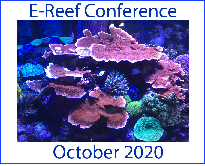 E-REEF Conference 2020 - EARLY BIRD
