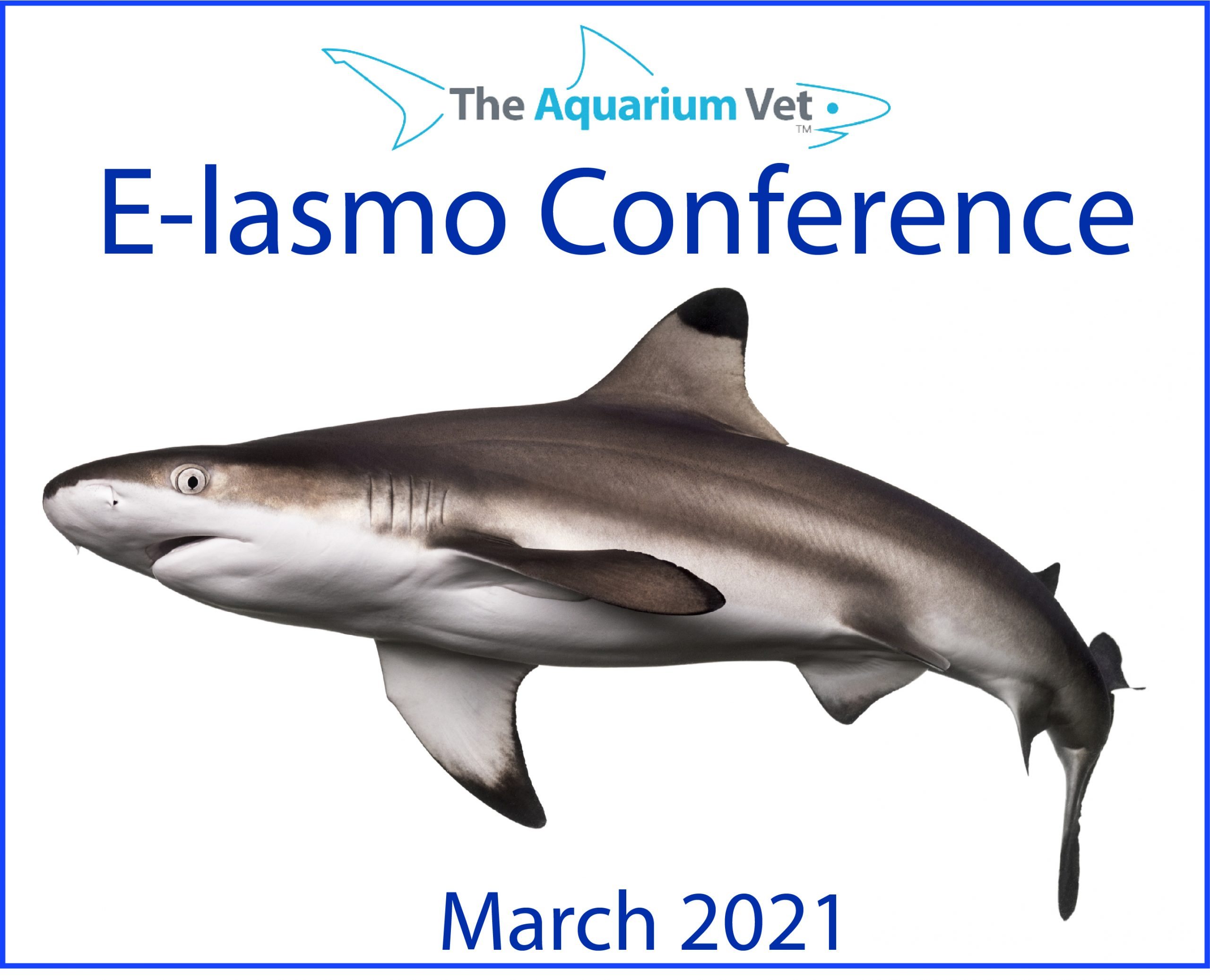 E-lasmo Conference 2021 (EARLY BIRD)